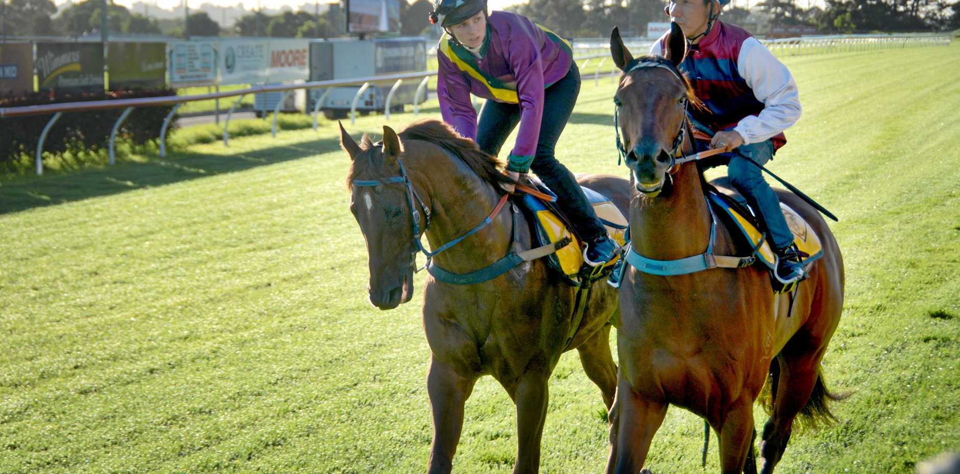 Weetwood Handicap candidate In His Stride (right) and jockey Kenji Yoshida prepare to gallop at this morning's Clifford Park Breakfast With The Stars with stable mate Real Ego (Bec Williams).