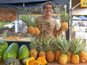 It's peak sweet pineapple season