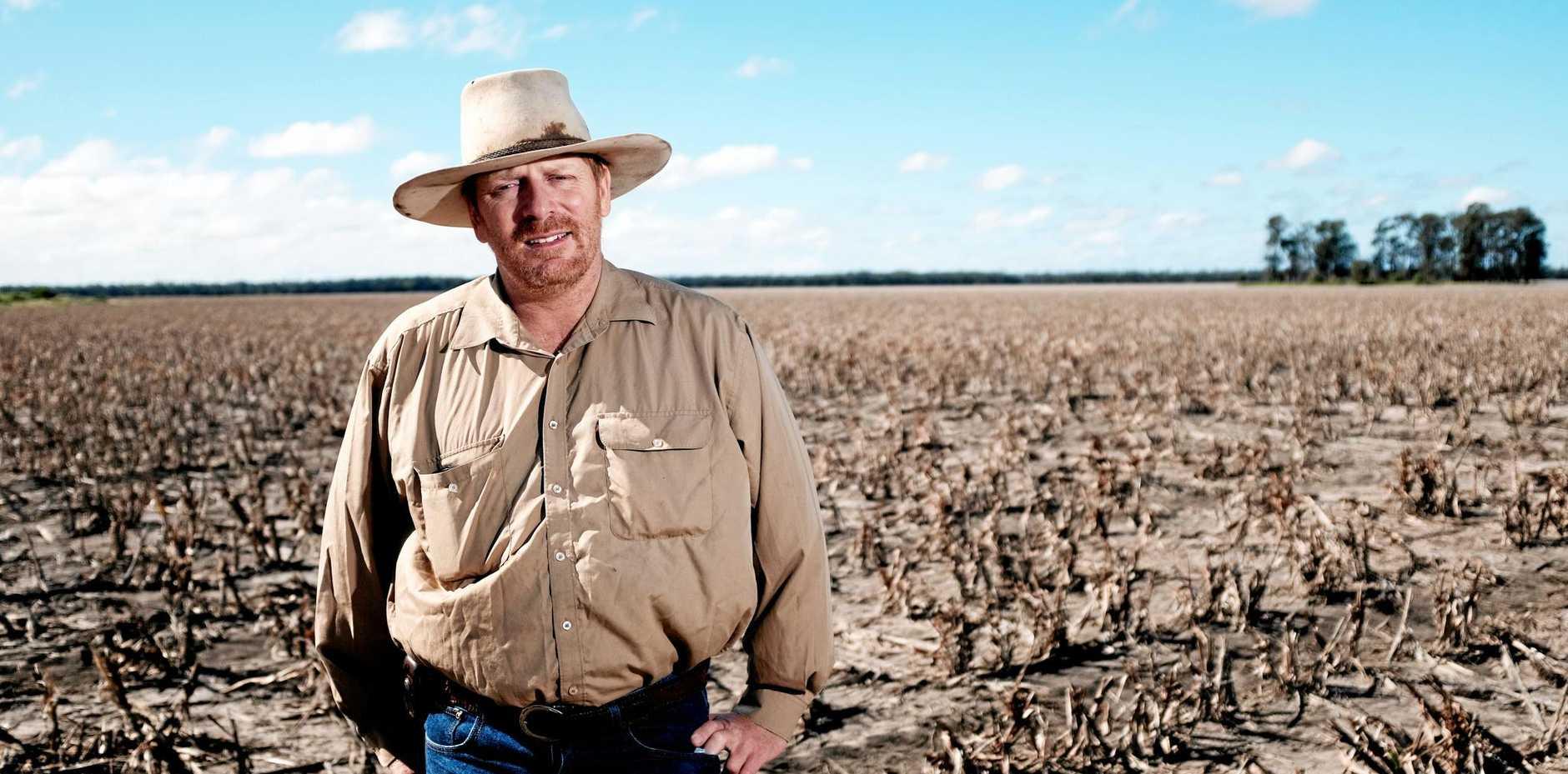 HEAVENS ABOVE: Warra farmer Brendan Taylor.
