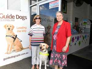PAW-SOME! You vote Guide Dogs as your top op shop