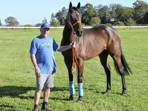 Happy Transporter aiming to deliver Toowoomba Cup