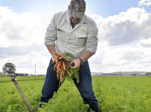 Heartache for farmers with crop lost to flood