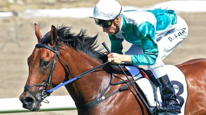 Blake Shinn rides Coffs Harbour trained gelding Free Standing to win the Country Championships Final at Royal Randwick on Saturday.