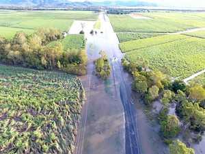 Growers divided on Kinchant's flood role