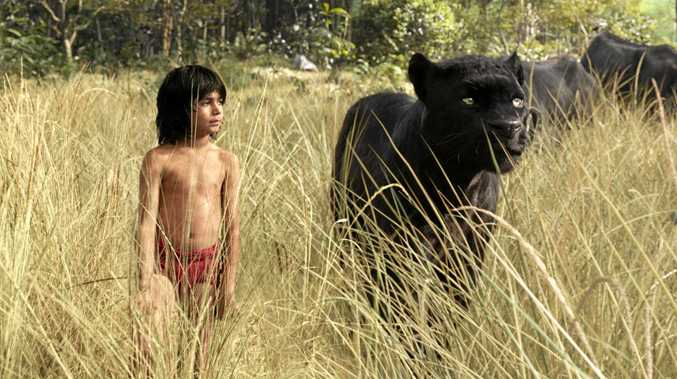 HIT: Mowgli (newcomer Neel Sethi) and Bagheera (voice of Ben Kingsley) embark on a captivating journey in
