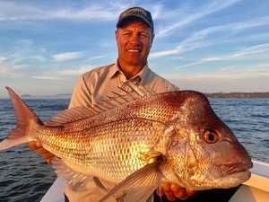 ET reels in a fighting big red off our coast