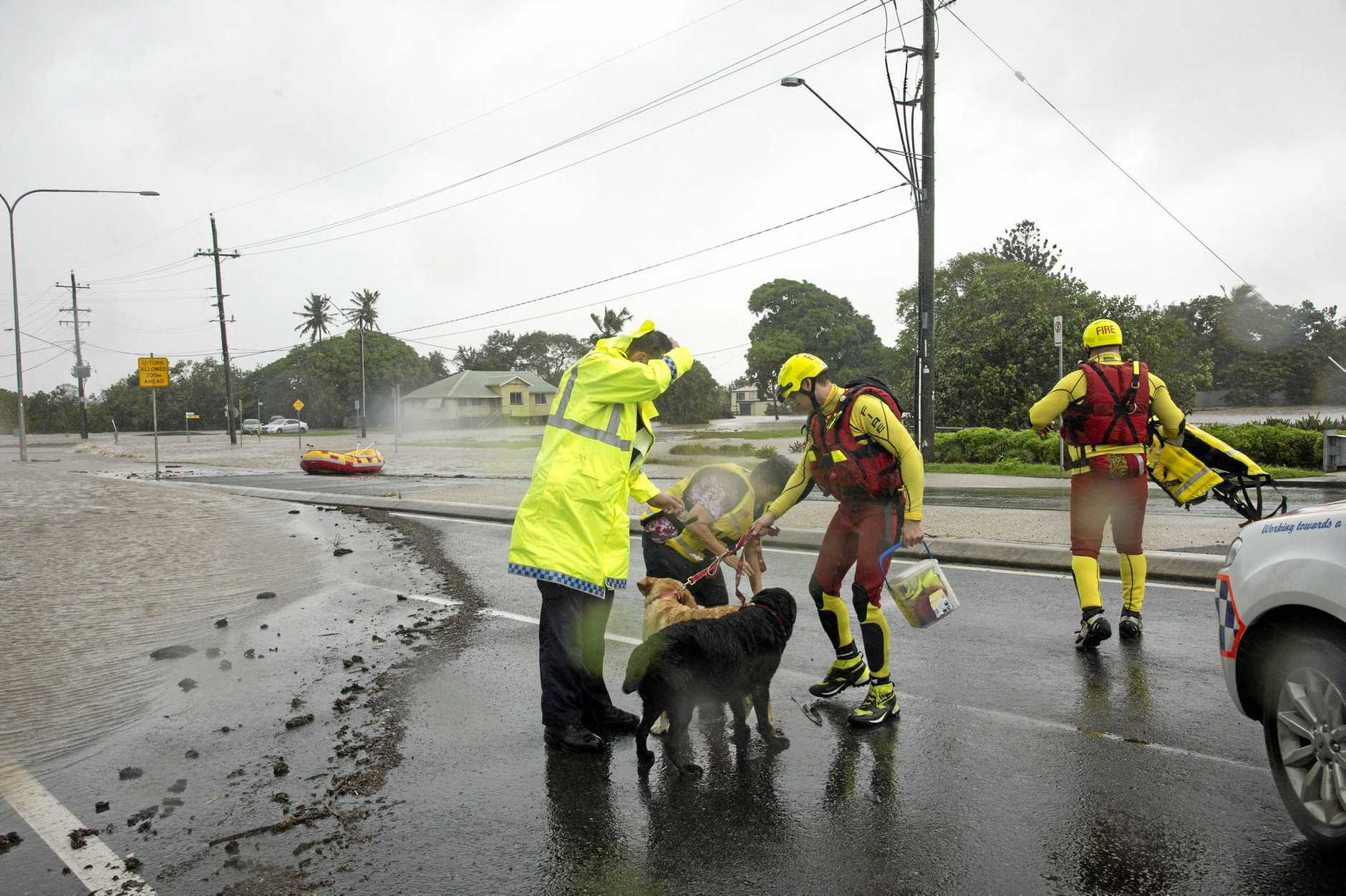 Palm St Resident Cathy Seiver, her dogs, And elderly mother, (already transported by Police), Assisted out of her street by QFES Swift water Rescue team members in Mackay, after tropical cyclone Debbie hit the north Queensland region, Wednesday, March 29, 2017. There are fears hundreds of homes and businesses have been damaged by ex-tropical cyclone Debbie after it hit north Queensland with ferocious winds and driving rain. (AAP Image/Daryl Wright) NO ARCHIVING