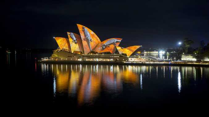 The Sydney Opera House will again be a canvas for creativity.
