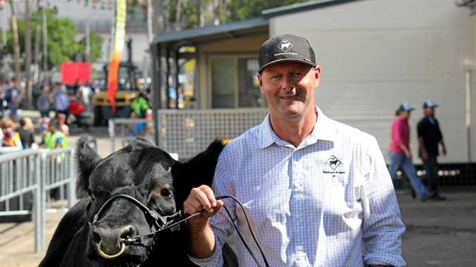 Darryl Heazlewood, from Platinum Angus Stud, is thrilled how his bull Magic Mike performed at the Sydney Royal Easter Show.