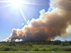 Bushfire hazard reduction, D'Aguilar.