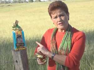 Hate to say it, but Pauline Hanson was right all along
