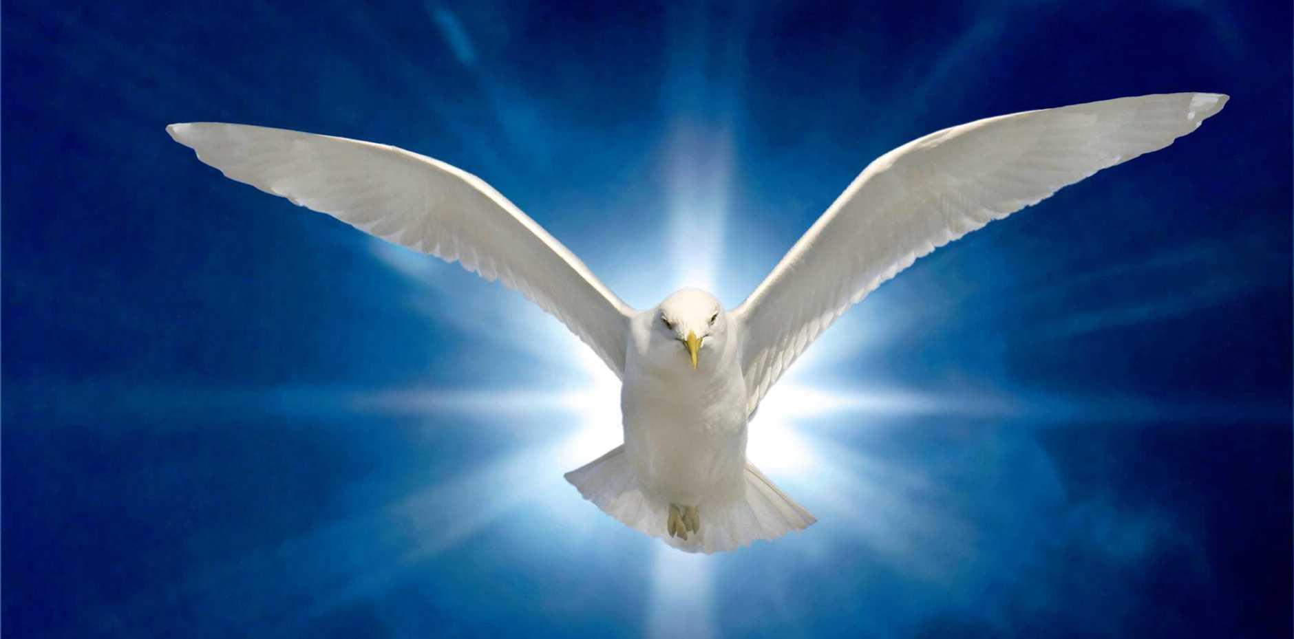 Holy Spirit Dove on Royal Blue Starburst Background
