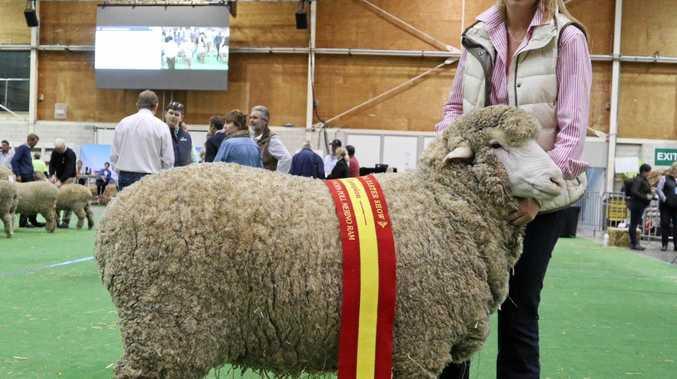 AGRICULTURAL ADVANCEMENT: Felicity Brumpton receives $5000 bursary.