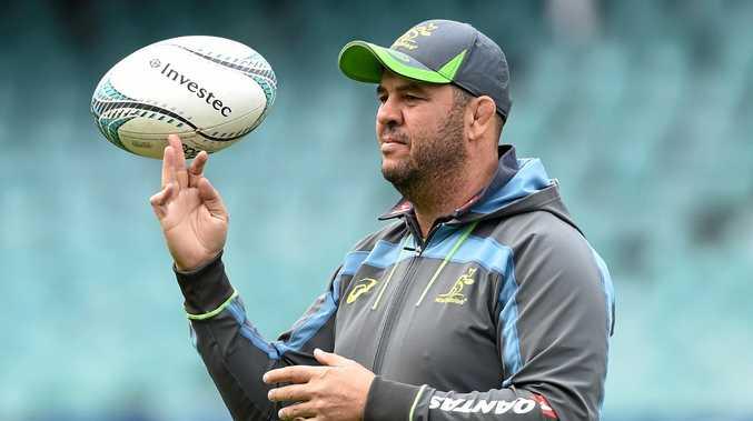 Australian rugby union coach Michael Cheika.