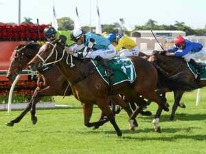 Racing QLD lends hand to trainers