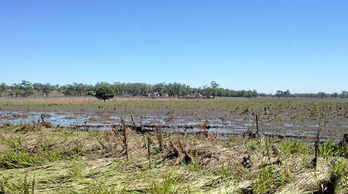 FLOODED: Aftermath of the flooding in the Monto region.