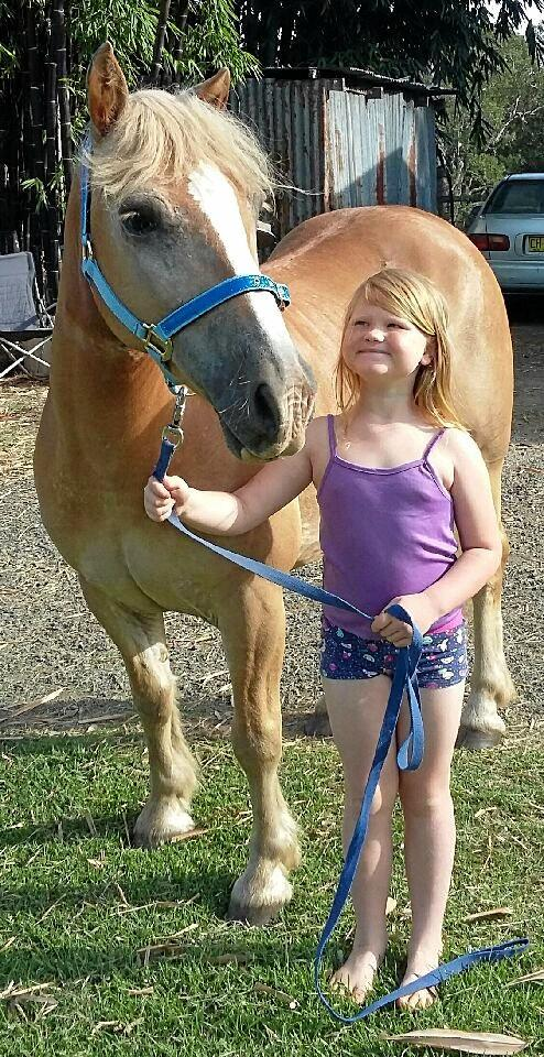 Emillee Cornell's beloved horse Harnsy was last seen struggling in floodwaters on Thursday, March 30.