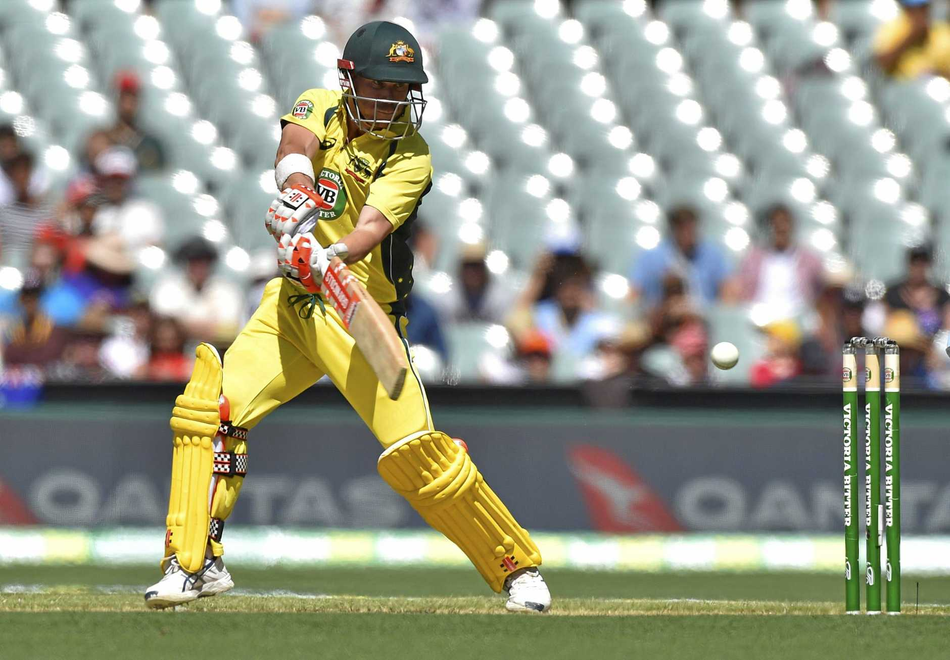 David Warner is a shoo-in for the Champions Trophy.