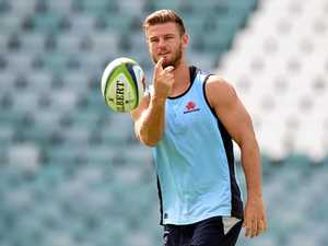 Kings dangerous, says Waratahs coach