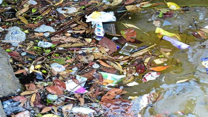 Do tougher measures need to be introduced to deter people from littering? Photo: Che Chapman