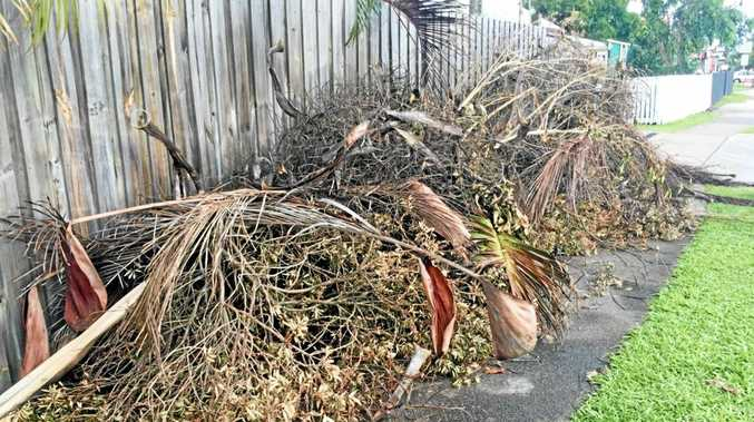 GREEN WASTE: The waste was put in mounds on the side of the road for council to pick up post Cyclone Debbie.