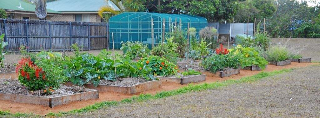 Help secure the future of the Cooroy Community Gardens.