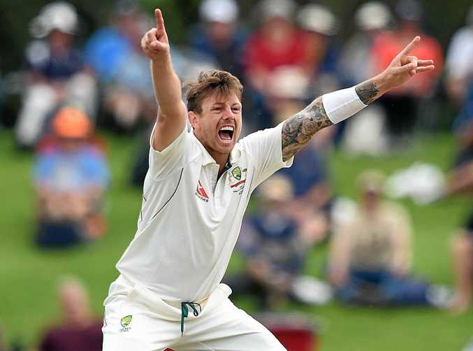 Bowler James Pattinson makes an appeal playing for Australia.