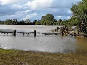 Flood relief grants soon available for SMEs and growers