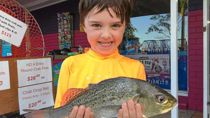 WELL SPOTTED: Sam Murray landed this spotted grunter bream he caught with his dad and grandad in Petrie Creek during the week.