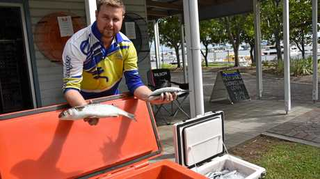 GOOD PRODUCT: LJ's Compleat Angler's Liam Jones with some fresh mullet and garfish caught this morning from Agnes Water.