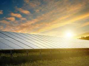 Solar farm lights up job hopes