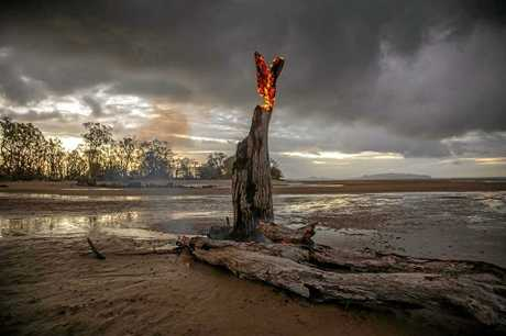 The lone tree at Shoal Point ablaze.