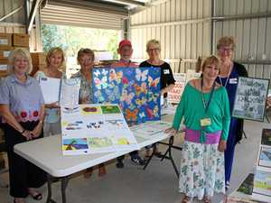 Colourful art entries fly in for Noosa Bookfest