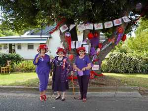 Top tree decorators crowned at Allora Autumn Festival