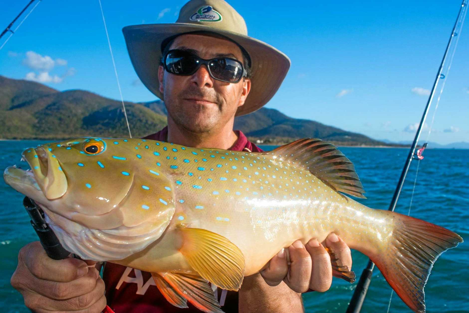 TOP TROUT: Ross, from Ergon Energy, with a nice coral trout caught while on charter with Reel Addiction Sport Fishing.