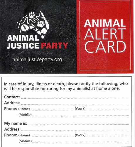 PETS AND AGEING: A great idea from the Animal Justice Party to help take the anxiety aware from people's whose pets are left home alone.