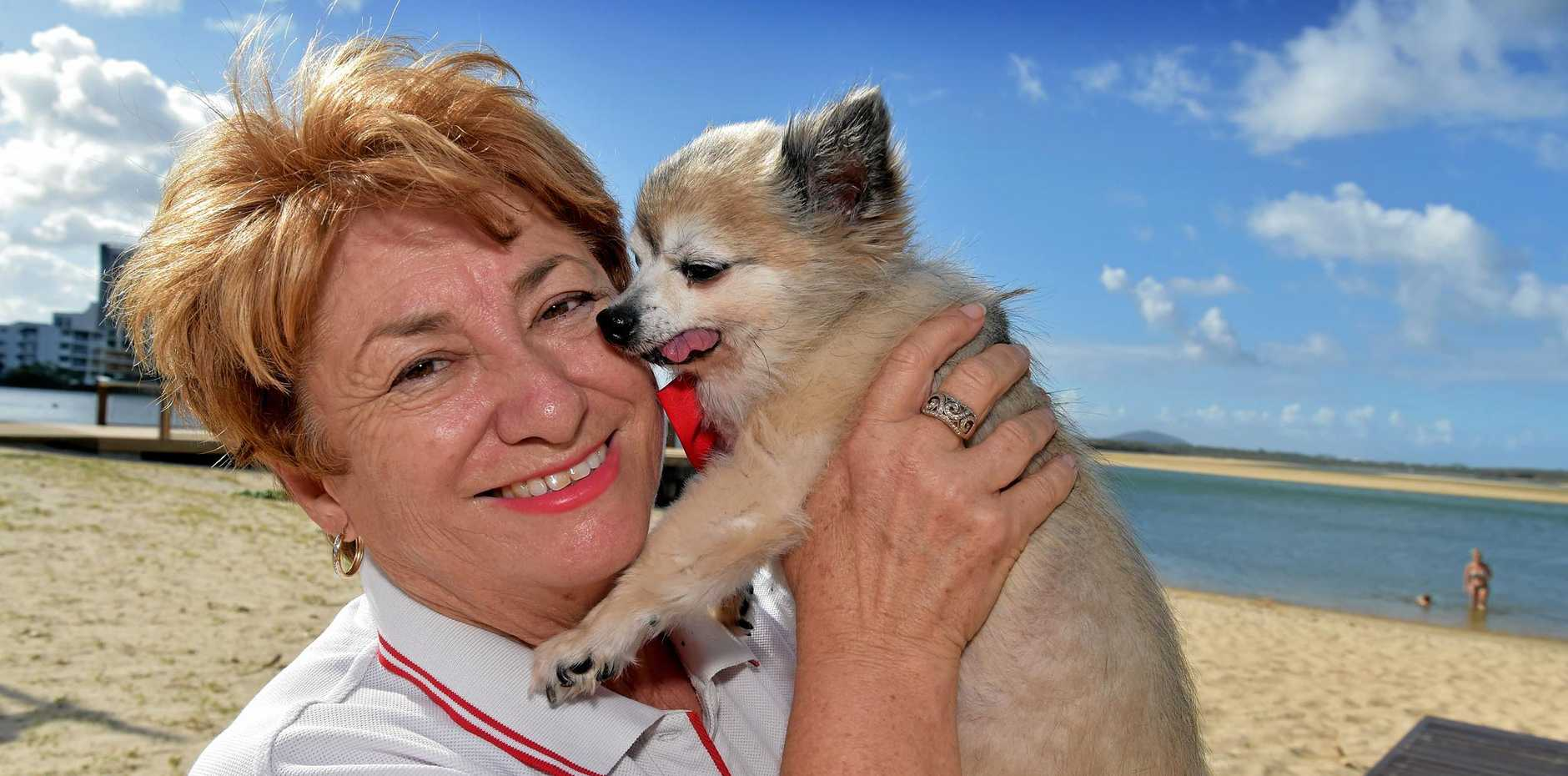 DRIVEN: Julie Penlington, founder of 4 Paws Animal Rescue, says she can't imagine a time when she won't be fighting for an underdog.