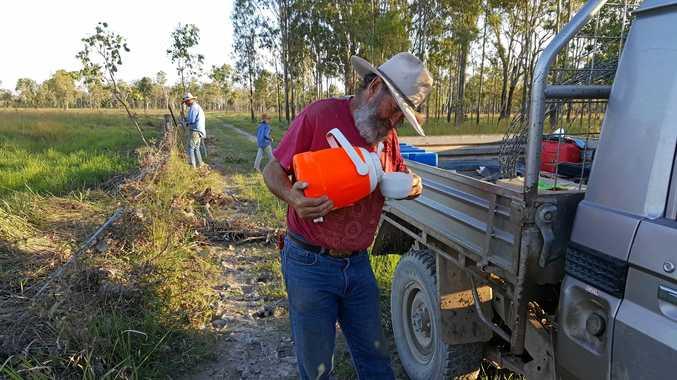 PITCHING IN: Volunteer Dave Brown, from Tasmania.