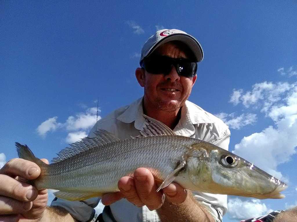 NICE CATCH: Dean Tomlinson landed this 41cm whiting off Bli Bli.