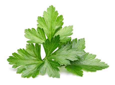 Parsley contains lots of vitamin goodies.