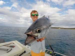 Cooloola Coast's top catches