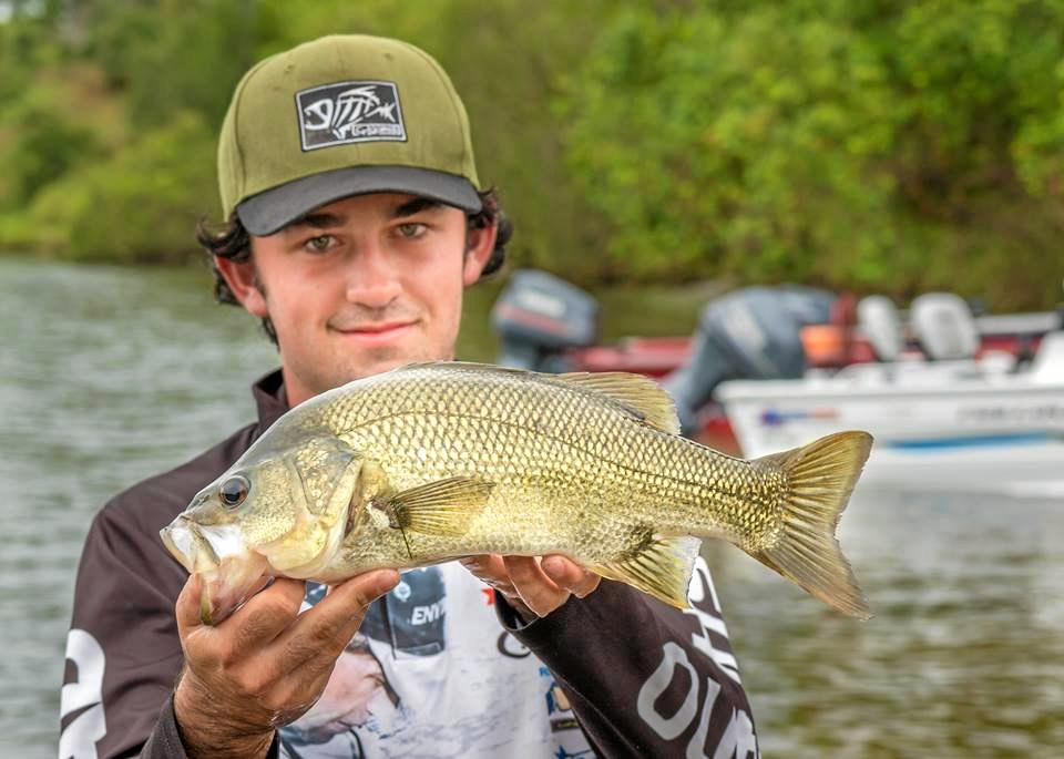 An angler with a big, healthy Australian bass. The annual zero-bag limit closure for bass and estuary perch in all rivers and estuaries is now in place until September 1.