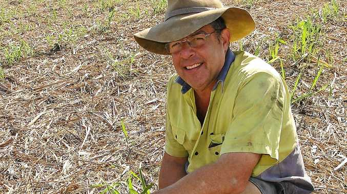 Canegrowers chairman Mackay Kevin Borg says Plane Creek Mill growers expect to start crushing on June 20.