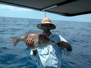 Light wind makes for prime time fishing