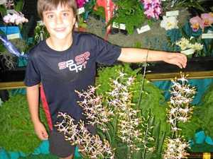 Garden Expo visitors in for spectacular orchid display