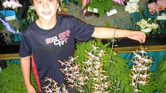 SPECTACULAR: Visitors to this weekend's Gympie Garden Expo can expect to see some spectacular orchids on show.