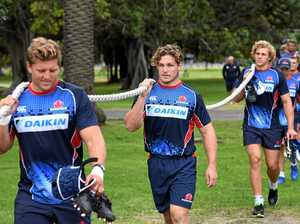 Revitalised Waratahs vow to wow against Blues