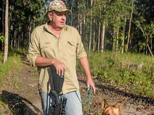 Wild dog baiting program not working: trapper