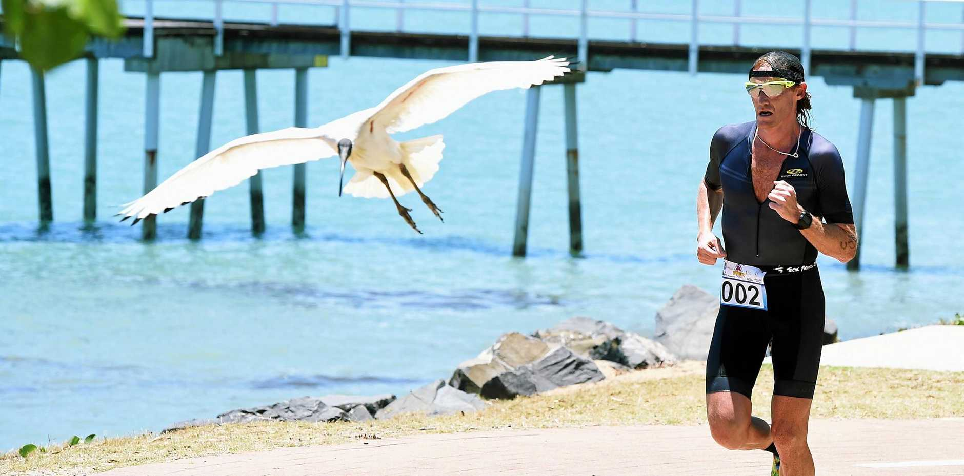 TOUGH WIN: Noosa's David Dellow is looking towards a world title.