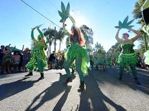 PHOTOS: The colour and fanfare at the 25th MardiGrass